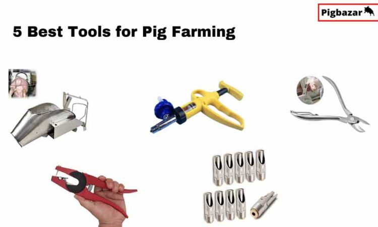 best pig farming equipment in india